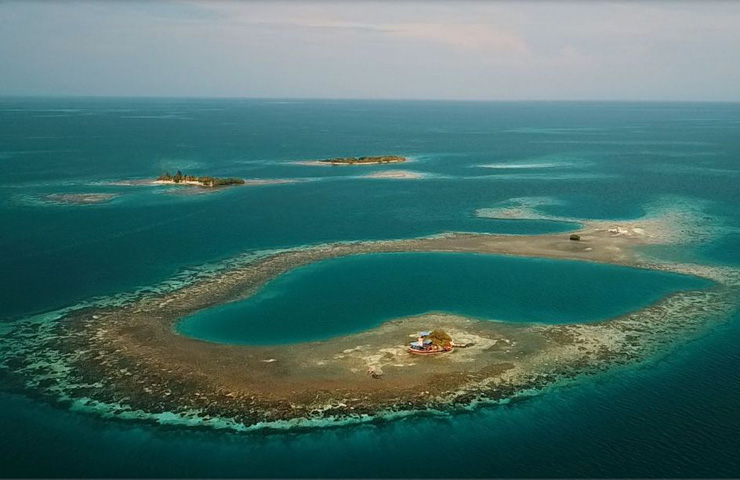 DESTAQUE bird island belize