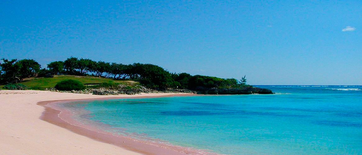 BANNER-Pink-sands-beach